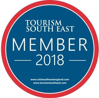 TSE 2018 logo
